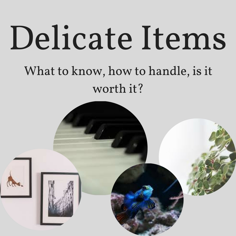 Moving Delicate Items